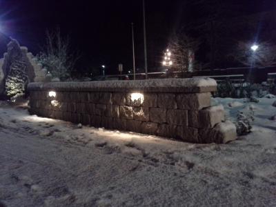 Garten im LED Licht