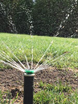 Montage von vollautomatischen Bewässerungssystemen für Rasen und Pflanzbeete
