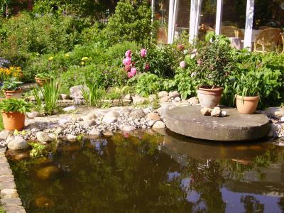 Mein Teich ,ganz alleine gestaltet